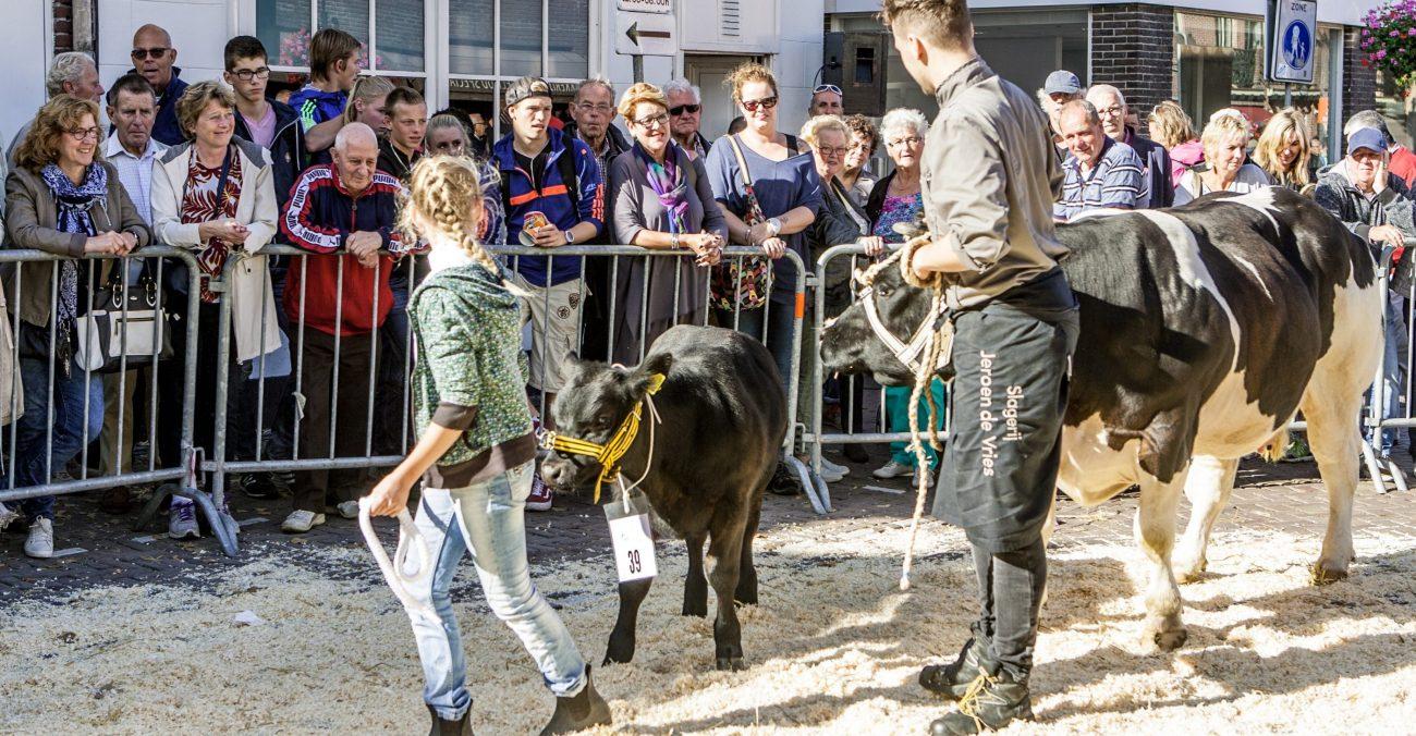 Landbouwdag en Lappendag Alkmaar Noord-Holland